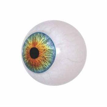 Gözü tercih eder ve kataraktlı gözü genellikle kullanmaz, bu da